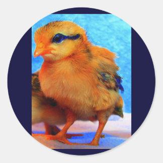 Easter Chick-A-Dee-Light Sticker