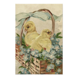 Easter Chick Basket Blue Forget Me Not Photograph