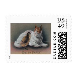 Easter Chick Cat Postage