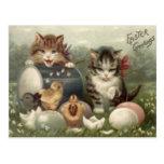 Easter Chick Colored Egg Kitten Cat Postcard