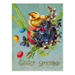 Easter Chick Colored Egg Purple Iris Postcard