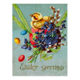 Easter Chick Colored Egg Purple Iris Postcard