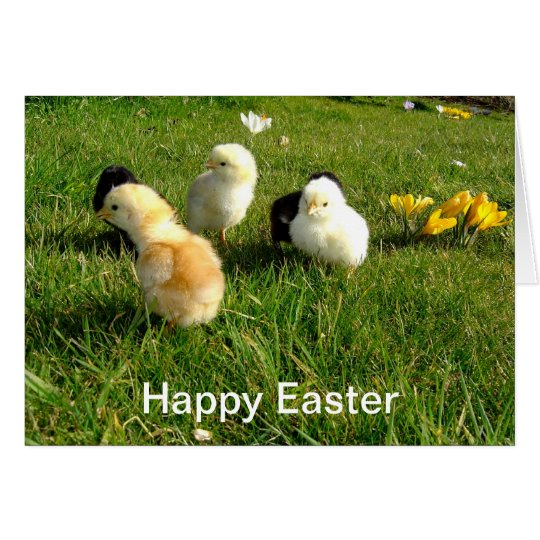 Easter Chicks and Crocus Flowers Card