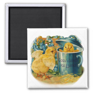 Easter chicks at play 2 inch square magnet