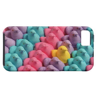 Easter chicks iPhone 5 cover
