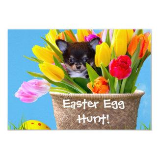 Easter Chihuahua dog Card