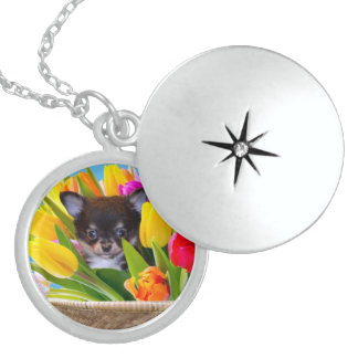 Easter Chihuahua dog Round Locket Necklace