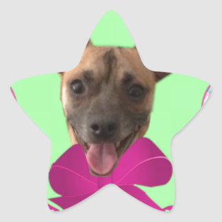 EASTER CHIHUAHUA STAR STICKER