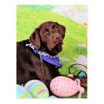 Easter - Chocolate Labrador - Hershey Postcard