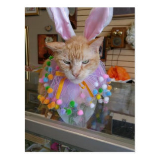 Easter Claude Postcard