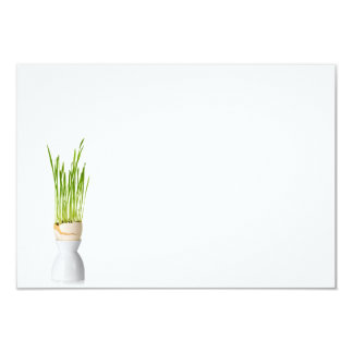 Easter Composition With Green Grass Card