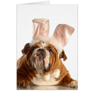 Easter Dog Greeting Card