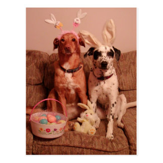 Easter Dogs Postcard