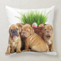 Easter Dogue de Bordeaux American mojo pillow
