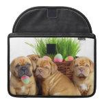 Easter Dogue de Bordeaux pups MacBook Pro Sleeves