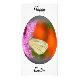 easter egg cabbage butterfly personalized photo card