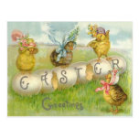 Easter Egg Chick Field Postcard