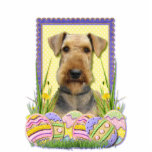 Easter Egg Cookies - Airedale Photo Sculpture