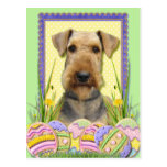 Easter Egg Cookies - Airedale Post Card