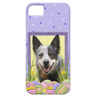 Easter Egg Cookies - Australian Cattle Dog iPhone SE/5/5s Case