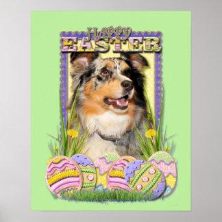 Easter Egg Cookies - Australian Shepherd Poster
