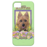 Easter Egg Cookies - Australian Terrier iPhone 5 Covers