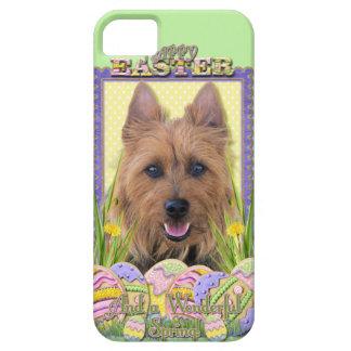 Easter Egg Cookies - Australian Terrier iPhone SE/5/5s Case