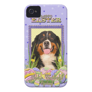 Easter Egg Cookies - Bernese Mountain Dog iPhone 4 Case