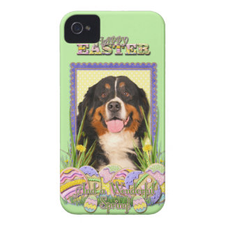 Easter Egg Cookies - Bernese Mountain Dog iPhone 4 Cover