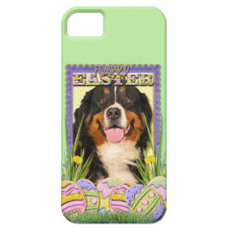 Easter Egg Cookies - Bernese Mountain Dog iPhone SE/5/5s Case