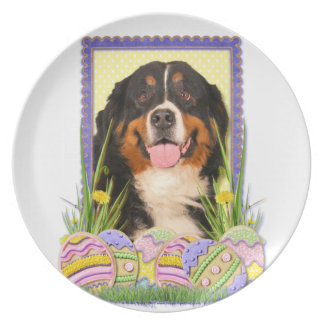 Easter Egg Cookies - Bernese Mountain Dog Plates