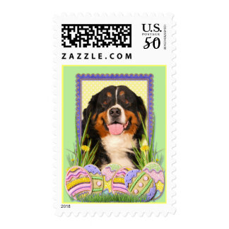 Easter Egg Cookies - Bernese Mountain Dog Postage