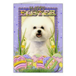 Easter Egg Cookies - Bichon Frise Cards
