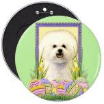 Easter Egg Cookies - Bichon Frise Pinback Button