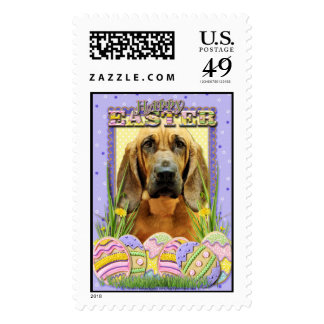 Easter Egg Cookies - Bloodhound - Penny Stamp