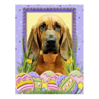 Easter Egg Cookies - Bloodhound - Penny Postcard