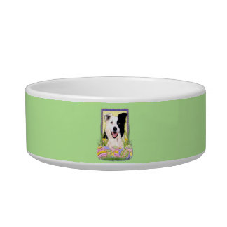 Easter Egg Cookies - Border Collie Cat Water Bowl
