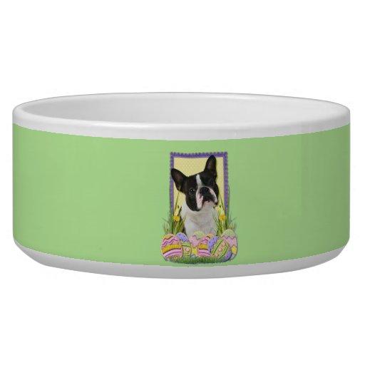 Easter Egg Cookies - Boston Terrier Pet Water Bowl