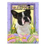 Easter Egg Cookies - Boston Terrier Postcard