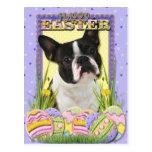 Easter Egg Cookies - Boston Terrier Postcards