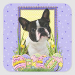 Easter Egg Cookies - Boston Terrier Square Stickers