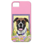 Easter Egg Cookies - Boxer iPhone 5 Case