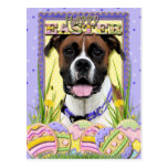 Easter Egg Cookies - Boxer Postcard