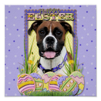 Easter Egg Cookies - Boxer Poster