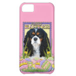 Easter Egg Cookies - Cavalier - Tri-color iPhone 5C Cover
