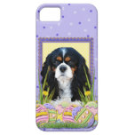 Easter Egg Cookies - Cavalier - Tri-color iPhone 5 Cover