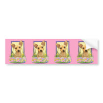 Easter Egg Cookies - Chihuahua - Daisy Bumper Sticker