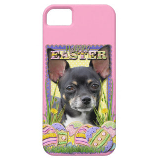 Easter Egg Cookies - Chihuahua iPhone SE/5/5s Case