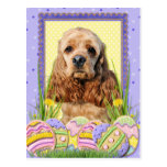 Easter Egg Cookies - Cocker Spaniel Post Cards