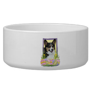 Easter Egg Cookies - Corgi Bowl